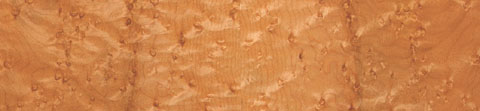 Folk Vintage back: Quilted bird's eye maple